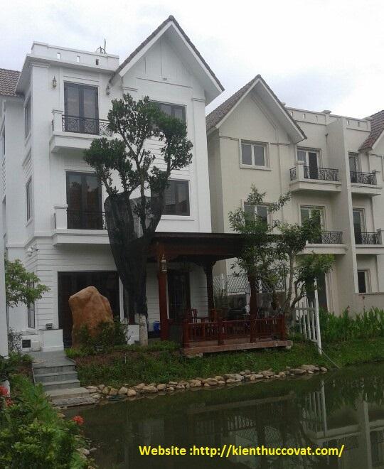 Giao Lưu Đồ Gỗ Với Bác Nguyễn Hoàng Long ở khu biệt thự Vinhome.
